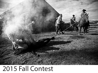 2015 Fall Contest Winners