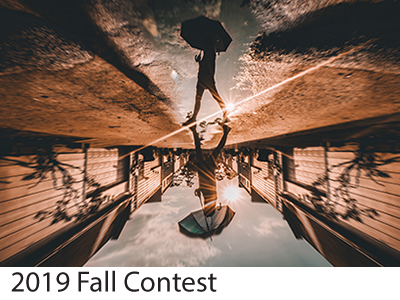 2019 Fall Contest Winners
